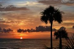 Congrats to June St. Pete Patch Facebook Cover Photo Winner!